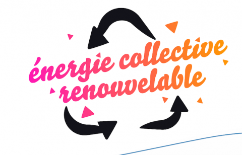 logo mandat Carine Chesneau energie collective renouvelable cjd Nantes
